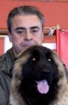 Alfredo Ferreira